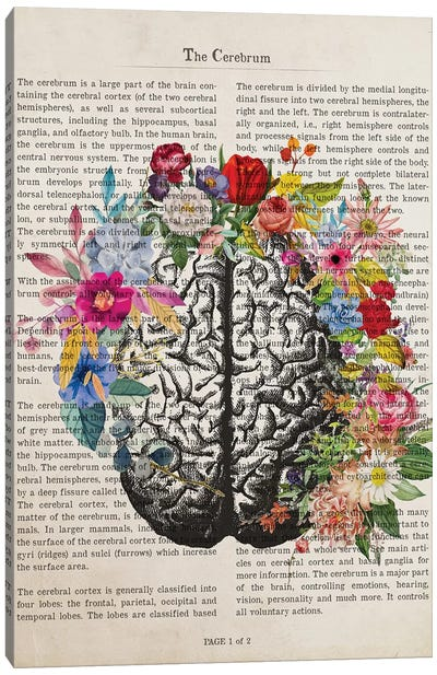 The Cerebrum Canvas Art Print
