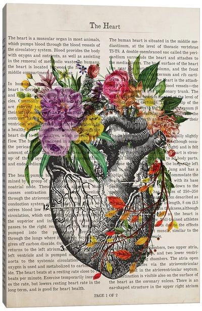 The Heart Canvas Art Print