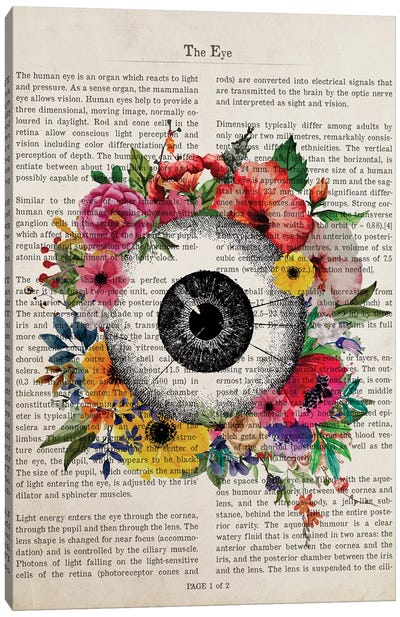 The Eye Canvas Art Print
