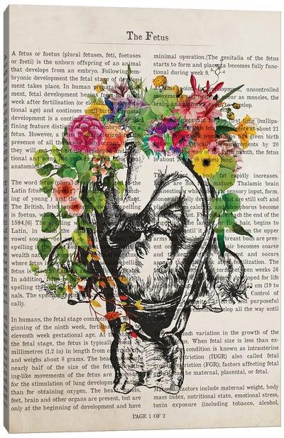 The Fetus Canvas Art Print
