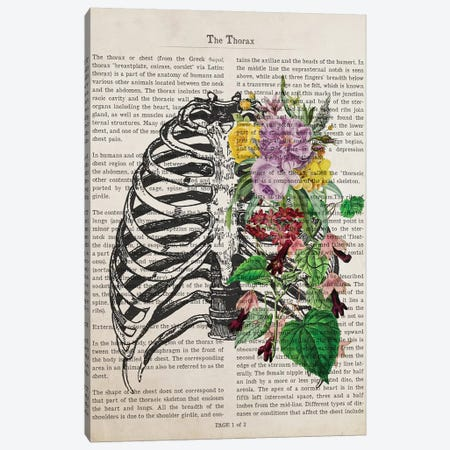 The Thorax Canvas Print #ADP3223} by Aged Pixel Art Print