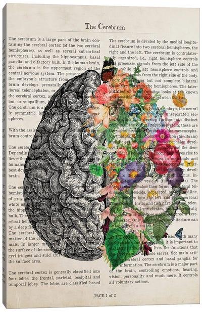 Brain Art Flower Anatomy Print Canvas Art Print