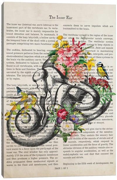Inner Ear Anatomy Flower Print Canvas Art Print