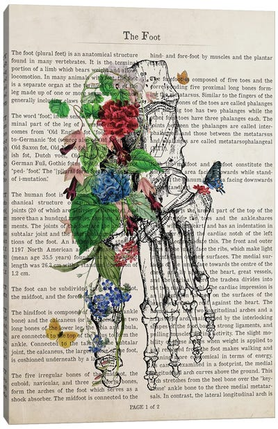 Foot Art Flower Anatomy Print Canvas Art Print