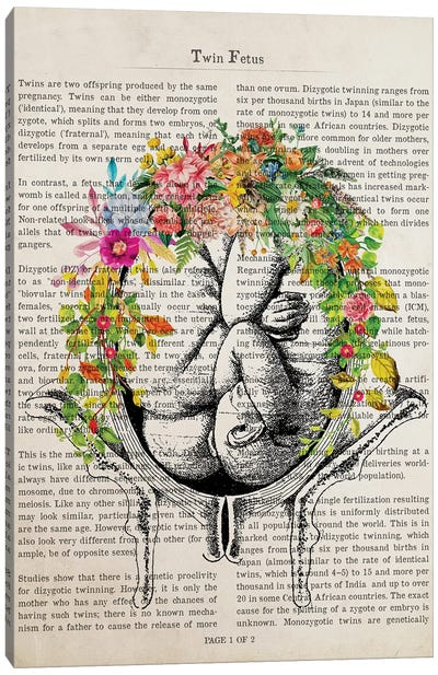Twin Fetuses In Womb Flower Anatomy Print Canvas Art Print