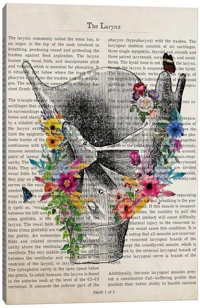 Larynx Anatomy Print Canvas Art Print