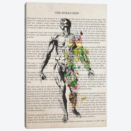 Human Body Anatomy Print Canvas Print #ADP3232} by Aged Pixel Canvas Wall Art