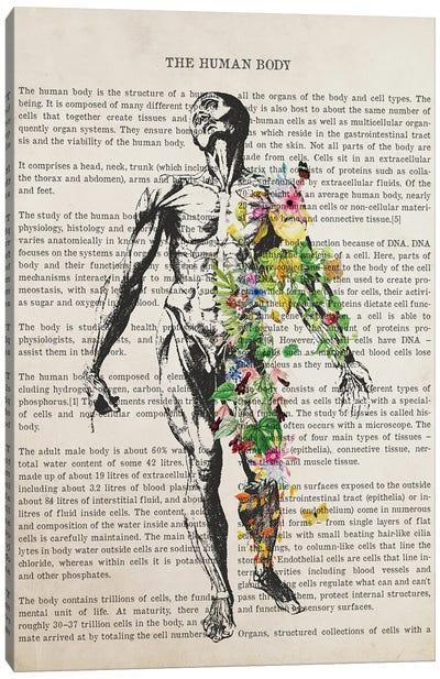 Human Body Anatomy Print Canvas Art Print