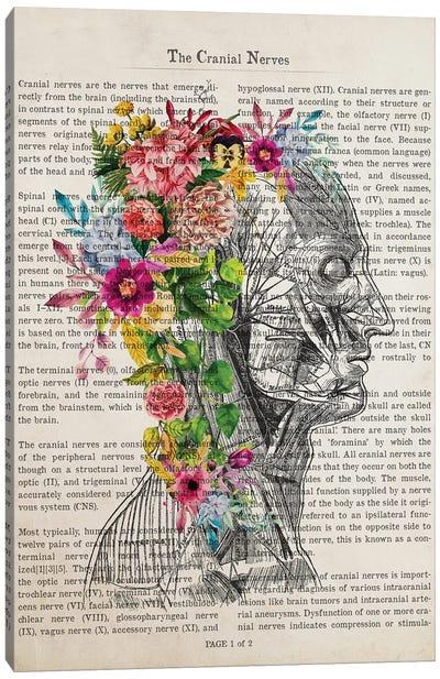 Cranial Nerves Flower Anatomy Print Canvas Art Print
