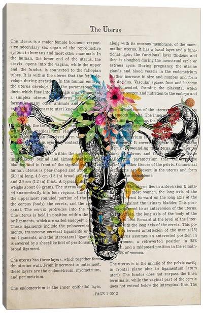 Uterus Anatomy Print Canvas Art Print