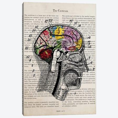 Brain Flower Collage Anatomy Print Canvas Print #ADP3235} by Aged Pixel Art Print