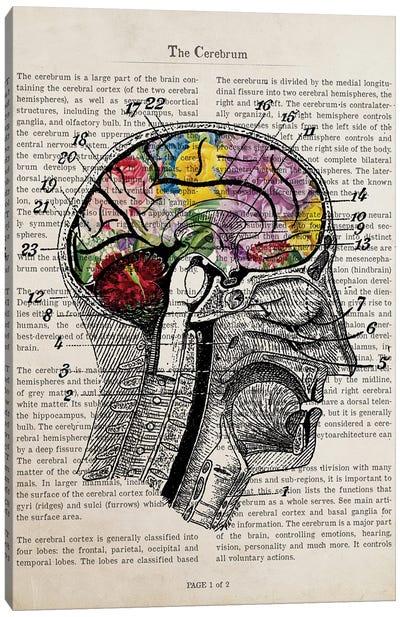 Brain Flower Collage Anatomy Print Canvas Art Print