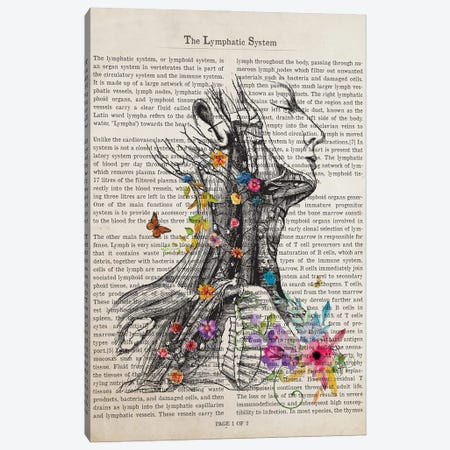 Lymphatic System Anatomy Print, Endocrinology, Lymph Nodes, Hematologist, Oncologist Art Canvas Print #ADP3275} by Aged Pixel Canvas Print