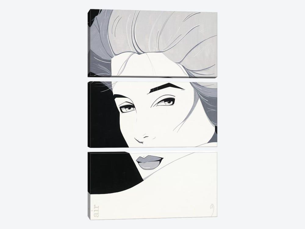 Air by Adri Scherpenberg 3-piece Canvas Print