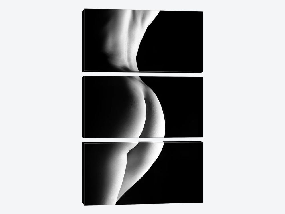 Vertical Closeup Of A Nude Sexy Womans Back And Ass by Alessandro Della Torre 3-piece Canvas Art