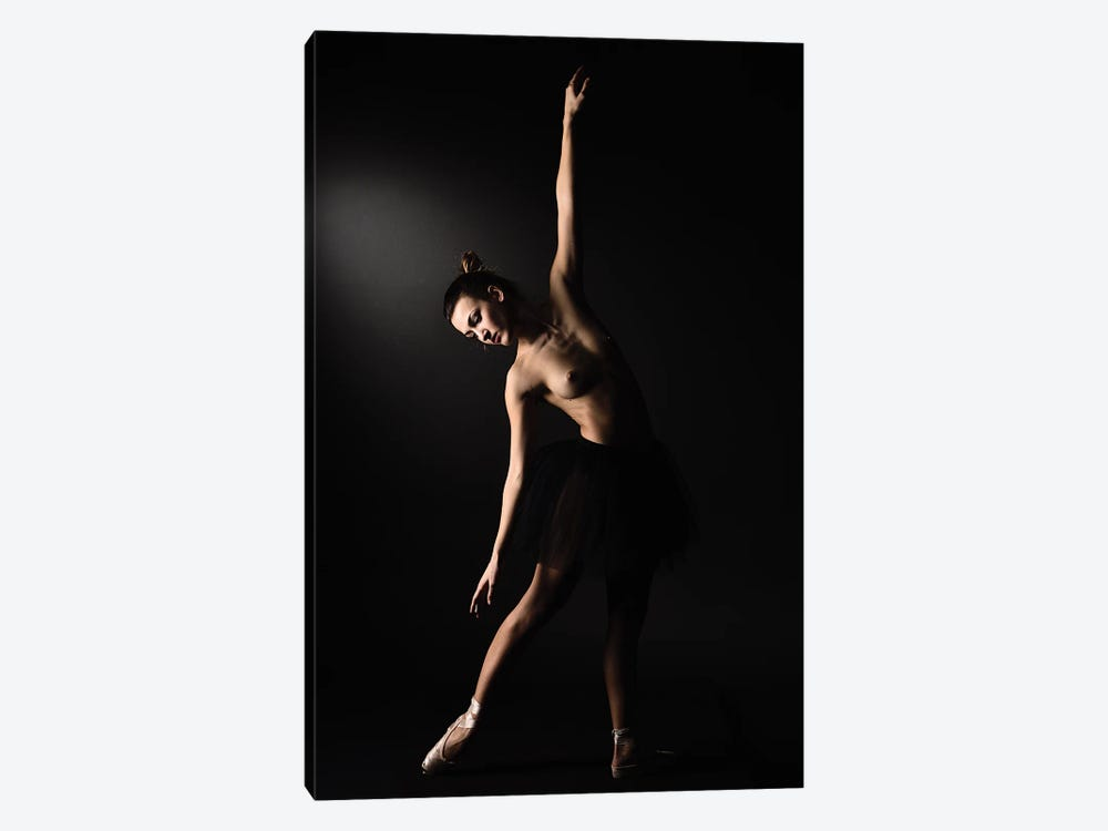 Nude Ballerina Ballet Dancer With Tutu Dress And Shoes II by Alessandro Della Torre 1-piece Canvas Art