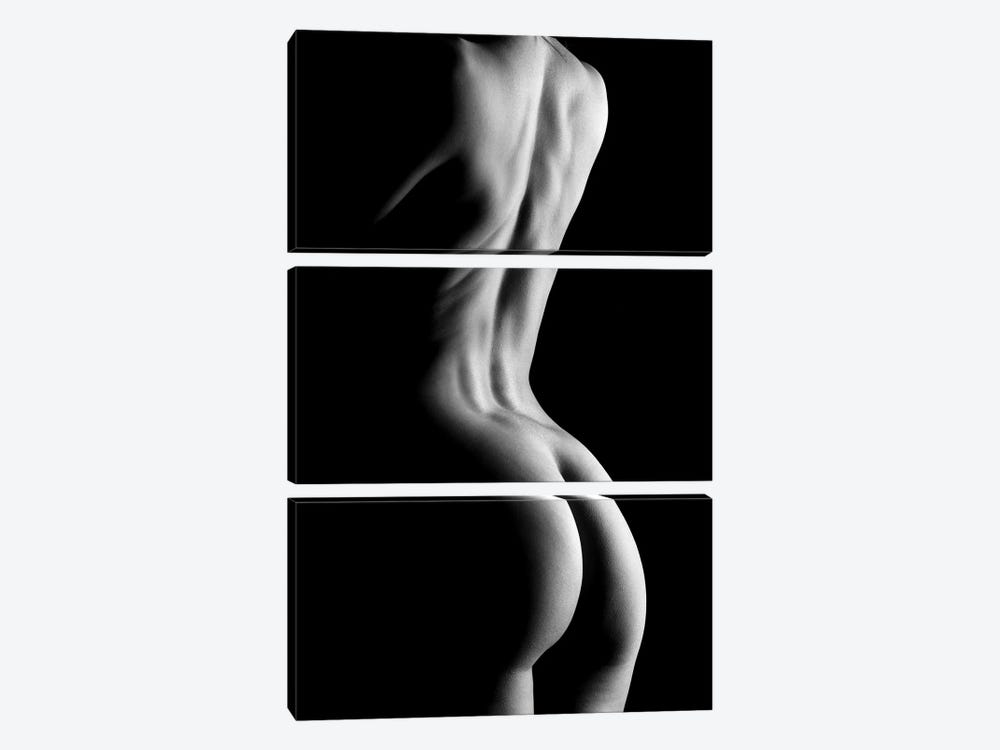 Nude Fine Art Standing Naked Woman's Body Sexy In Black And White XIV by Alessandro Della Torre 3-piece Canvas Art