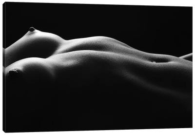 Naked Black And White Nude Belly Button And Female's Abdominal IV Canvas Art Print