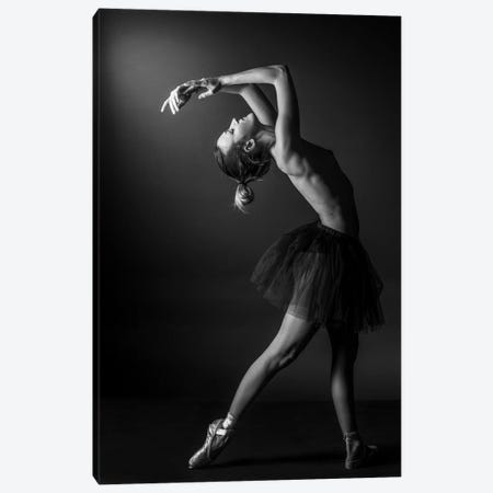 Classic Ballerina Dancer In Ballet Tutu Dress Classical Posing IV Canvas Print #ADT352} by Alessandro Della Torre Canvas Wall Art