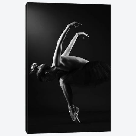 Classic Ballerina Dancer In Ballet Tutu Dress Classical Posing VI Canvas Print #ADT353} by Alessandro Della Torre Canvas Wall Art