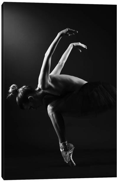 Classic Ballerina Dancer In Ballet Tutu Dress Classical Posing VI Canvas Art Print