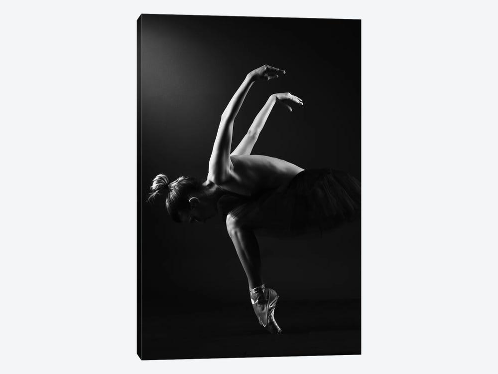 Classic Ballerina Dancer In Ballet Tutu Dress Classical Posing VI by Alessandro Della Torre 1-piece Art Print