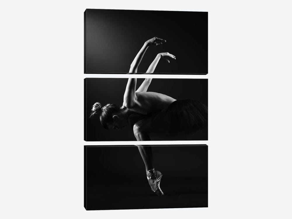 Classic Ballerina Dancer In Ballet Tutu Dress Classical Posing VI by Alessandro Della Torre 3-piece Art Print