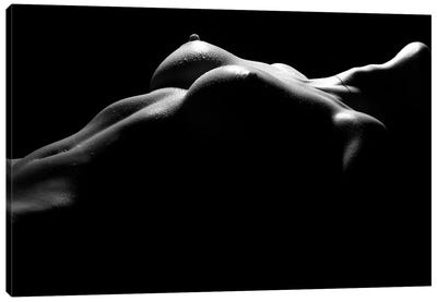 Nude Woman's Chest And Bresst In A Black And White Sensual Bodyscape Canvas Art Print