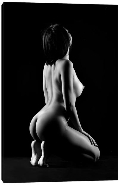 Black And White Erotic Naked Sitting Down Nude Woman I Canvas Art Print