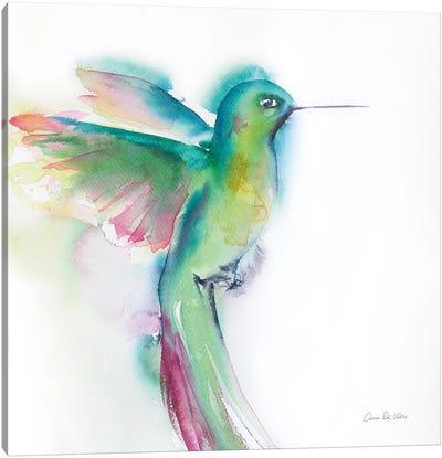 Hummingbirds II Canvas Art Print