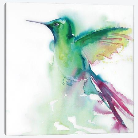 Hummingbirds III Canvas Print #ADV17} by Aimee Del Valle Canvas Wall Art
