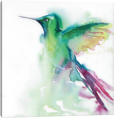 Hummingbirds III Canvas Art Print