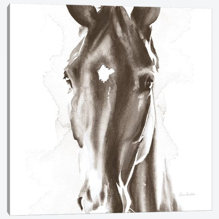 Le Cheval Noir Brown Crop Canvas Print #ADV9} by Aimee Del Valle Canvas Print