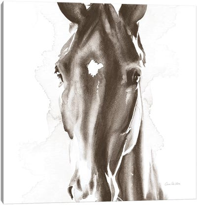 Le Cheval Noir Brown Crop Canvas Art Print