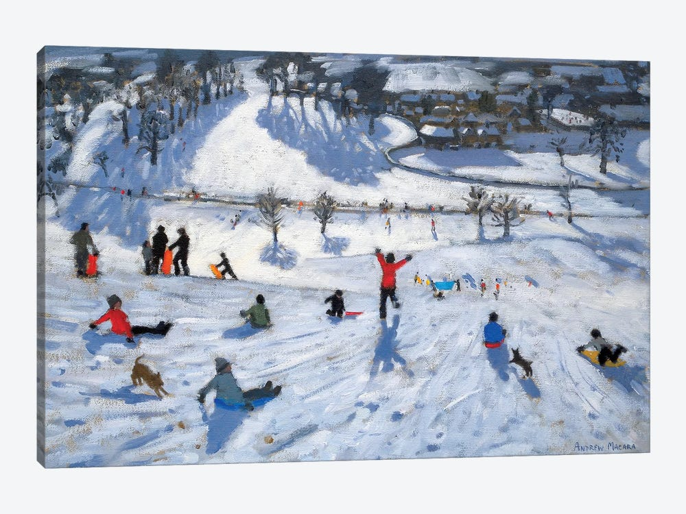 Winter Fun, Chatsworth by Andrew Macara 1-piece Canvas Artwork