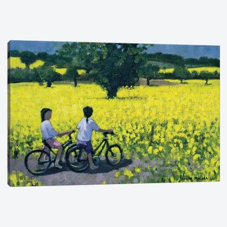 Yellow Field, Kedleston, Derby Canvas Print #ADW30} by Andrew Macara Canvas Art