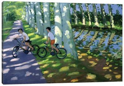 Canal du Midi, France Canvas Art Print