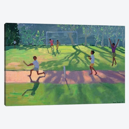 Cricket, Sri Lanka I Canvas Print #ADW8} by Andrew Macara Canvas Wall Art