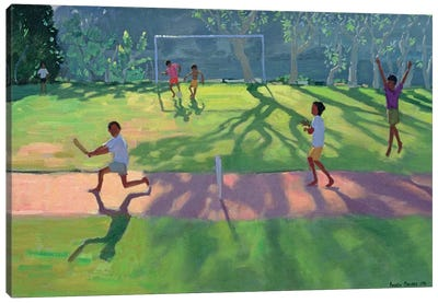 Cricket, Sri Lanka I Canvas Art Print
