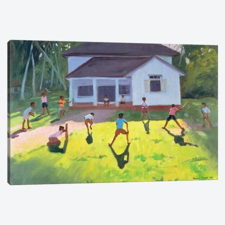 Cricket, Sri Lanka II Canvas Print #ADW9} by Andrew Macara Canvas Art