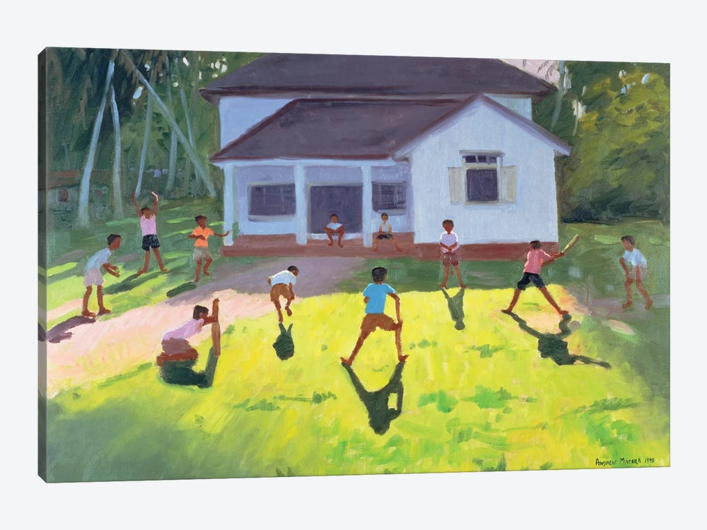 Cricket, Sri Lanka II by Andrew Macara 1-piece Canvas Artwork