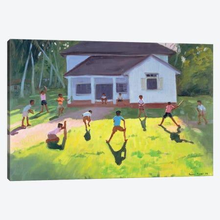 Cricket, Sri Lanka II Canvas Print #ADW9} by Andrew Macara Canvas Art