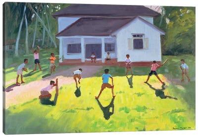 Cricket, Sri Lanka II Canvas Art Print