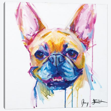 French Bulldog Canvas Print #AEC23} by Amy Eichler Canvas Artwork