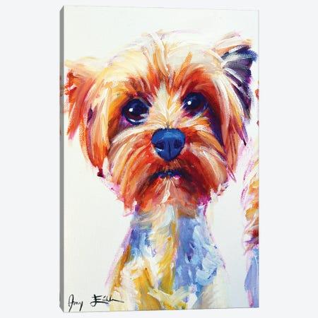 Yorkie Canvas Print #AEC28} by Amy Eichler Canvas Wall Art