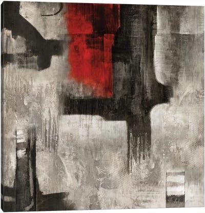 Singular Vision Canvas Art Print