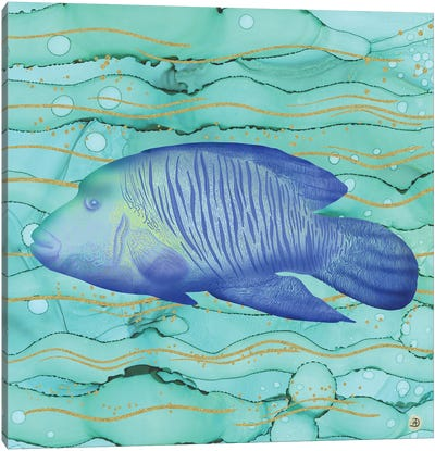 Humphead Wrasse Exotic Fish Swimming In The Coral Reef Emerald Water Canvas Art Print