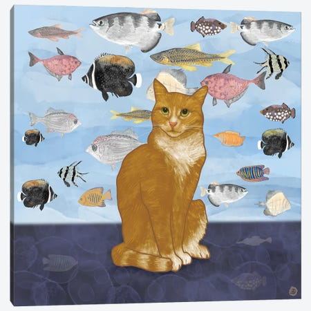 Kitty Dreams - Watching The Fish Tank Canvas Print #AEE24} by Andreea Dumez Art Print