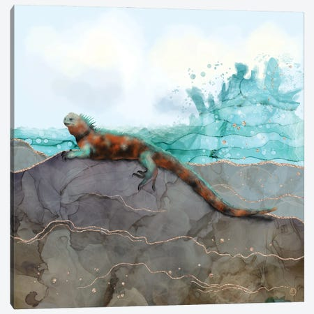 Marine Iguana On The Seashore Canvas Print #AEE27} by Andreea Dumez Canvas Print