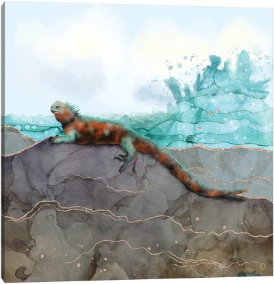 Marine Iguana On The Seashore Canvas Art Print